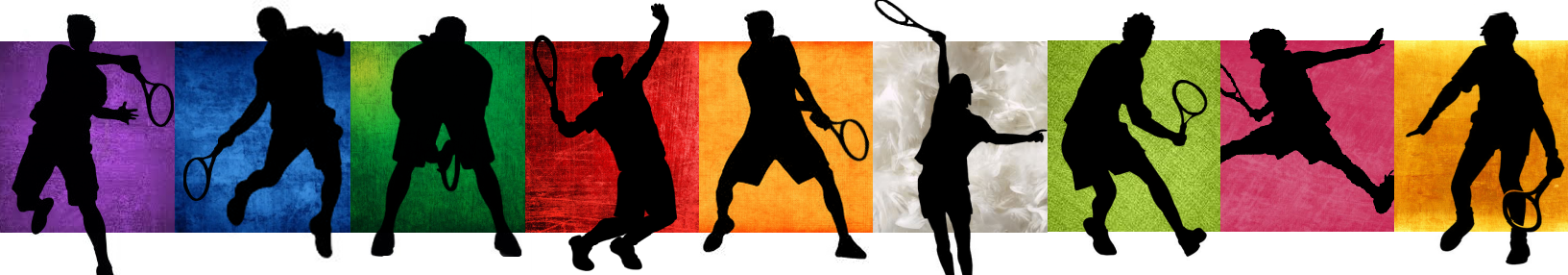 prince_of_tennis___seigaku_team_banner_by_swisskun-d7s0v4l